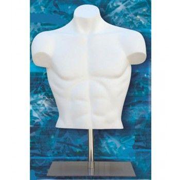 Bust mannequin man short bust man