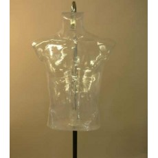 Transparent bust 2005 uct