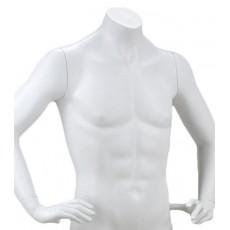 Mannequin man bust y461/2