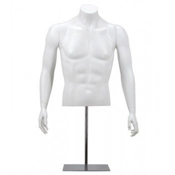 Bust form male - Bust mannequin man y420