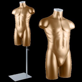 Busto masculino Base + Torso + Manche